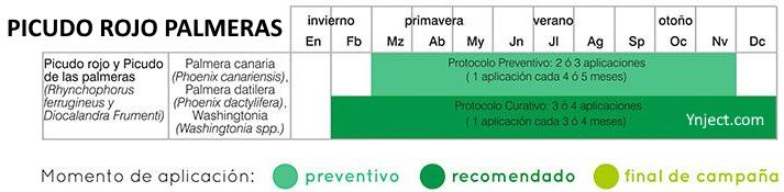 calendario tratamientos picudo rojo palmeras