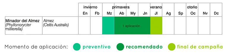Calendario de tratamientos minadores por endoterapia